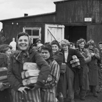 Reading List #8: Liberating Bergen-Belsen